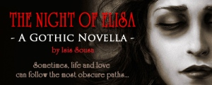 BOOK BANNER-the night of elisa