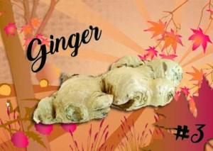 ginger3